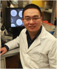 Dr. Zhen Gu in his laboratory